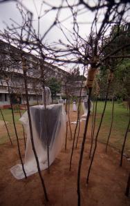 Installation by Lijo Jos (47)